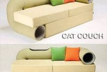 Cat Products We Love