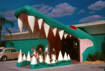 Retro Road Trip: Roadside Attractions