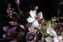 fleur / by Lindsay Brillson