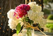 DIY wedding / Save money and go green with DIY wedding projects.