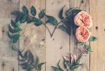 Wedding decor / Sustainable wedding and reception decor ideas