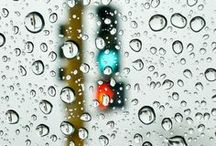 Life in the rain / I'd be down if it rained year-round, every day. Rain is the best.