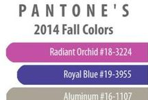 TREND: Fall 2014 / by Home Gallery Stores