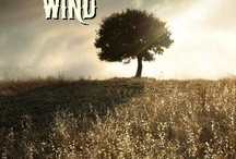 Taming the Wild Wind / This is my first e-book and can be downloaded to Kindle, Nook, and other e-readers. I wrote the story for my mom.