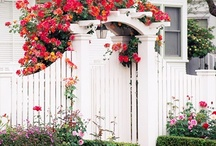 Country Garden and Entryway / by Lisa Metzger