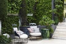 Gardens / Garden Decor