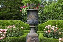 I'm Excessively Fond of a Garden / by Yara Elizabeth Brighton