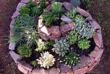 Garden: Ideas / My husband and I love to garden!  I can't wait until the Spring!