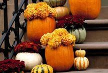 Fall/Halloween Ideas - my FAV  / by Kimberly Moore