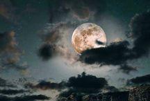 moon / by Seth Macbeth
