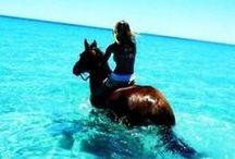 beach, water... ahhhh