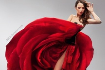 Fashionable & Stylish / Haute Couture / by Nartha R.Arzatec