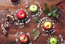 Food Love / by Jennifer Parsons