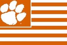 Clemson Tiger Pride / All things Clemson! / by Tara Jenkins