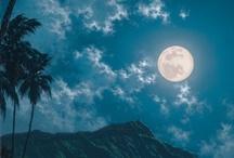 Lovely Luna  / by Debra Douglas
