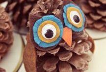 Be Wise: Owls / by Jessica Cohen @EatSleepBe
