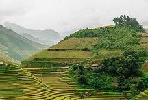 Vancouver To Vietnam?! Option 3 Fall 2015