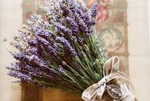 Lovely Lavenders and Lilacs / Lovely shades of purple, plum, lavender, and grape inspiration.  Perfect Postage top picks!  Includes lovely shades of lavendar weddings.