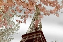 Parisienne parties / It's all about Paris weddings, parties and lovely images of Paris, France.