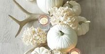 Thanksgiving Ideas / Ideas for Thanksgiving centerpieces & decor.