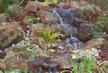 pondless waterfalls / by Debi Brown