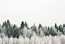 Winter Wonterland.