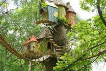 Treehouses / by Jack