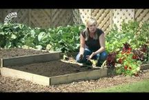 Gardening Videos from Suttons / A collection of gardening Videos to inspire and inform
