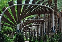 Garden Arbors & Trellises / Whether you can eat it or not, if it is designed for a plant to inhabit, arbors or trellises they are. / by Garden Expressionist
