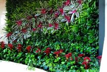 Garden Verticality / Wall gardens, whether edible or decorative are located in a place that is far more likely to be in sun than the rest of your yard, and insulates your home. / by Garden Expressionist