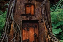 Tree Houses, Log Cabins, & All things fun / by Joanne Stecker Butzier