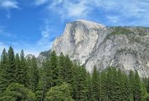 California beauty / by Cindy McNiel