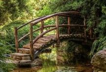 Architecture: Bridges & Tunnels / beautiful, unusual, and charming bridges and tunnels all over the world / by Shelly Lickliter