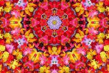 Mandala and beyond