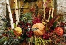 Holidays and Decorations / by Cyndy Thomas