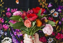 flora / by Lydia Shuart
