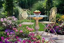 Cozy Yard Spaces / by Couture Cake Jewelry ~ Lacie Nichols
