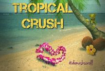 Tropical Crush / all things tropical / by Amy Lehman