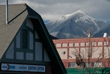 Flagstaff, Arizona / Travel Photos to Inspire Your Flagstaff, Arizona Vacation Planning! / by AllTrips