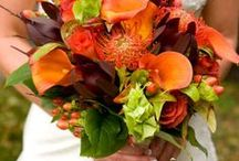 Fall Wedding Inspiration / Fall in love with fall.  The bright oranges and reds, the rustic browns, the fading greens, this is a board for autumn weddings.