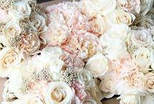 Wedding / by Reina Porritt