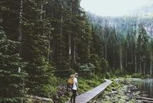 Adventure / by Reina Porritt
