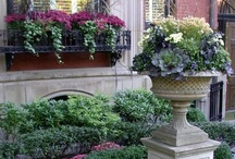 Home - Outdoor Decor / by Ralene Gerrard Bills