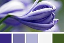 [ colors ]