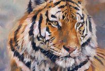Malba: zvířata