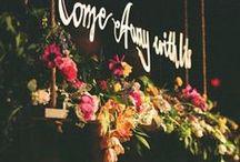 Wedding Ideas / by Kelly Larson