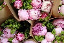 Flowers / Flowers, flower arrangements, interior design, home decor, flowers in your home, porch decor, curb appeal