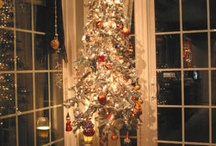 Holiday Fun / by Kimberly Tarleton
