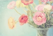 Flowers&Gardens