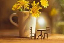Miniature / by Coffee Lady
